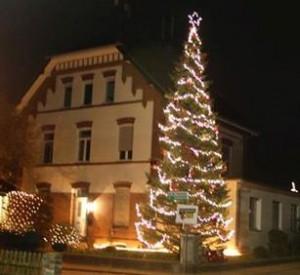 Weihnachtsbaum_2014